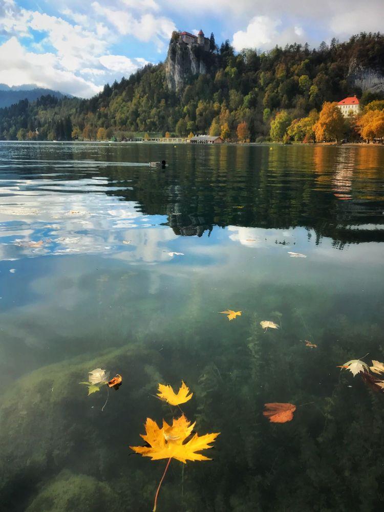 Slovenia © Karen Hutton