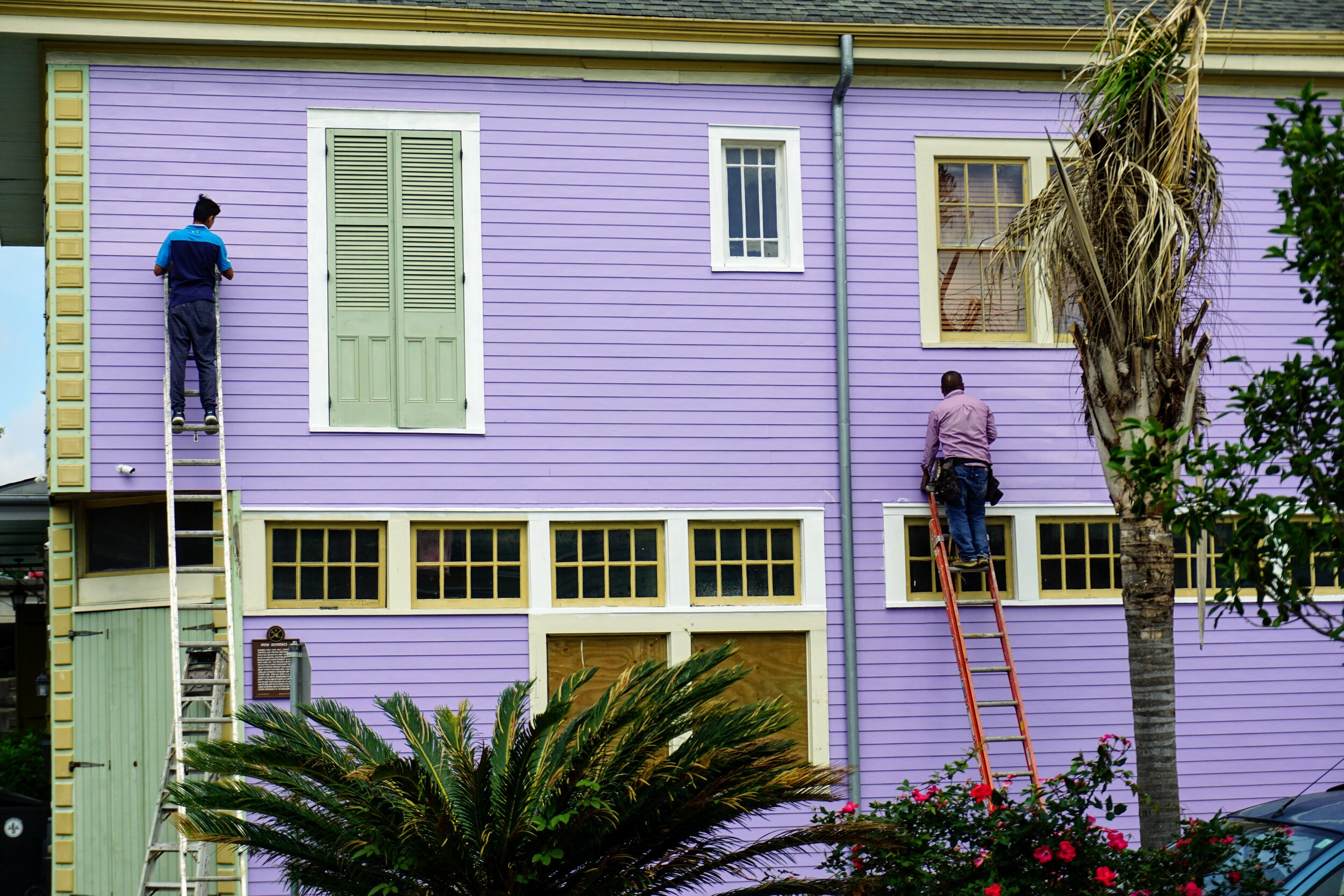 two people on ladders, painting a purple house for House of Tulip