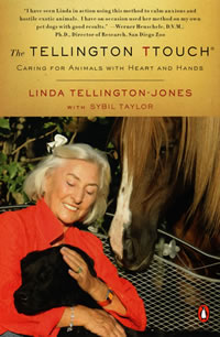 Linda Tellington Jones strokes a black lab's ears as a chestnut horse with blaze looks on.