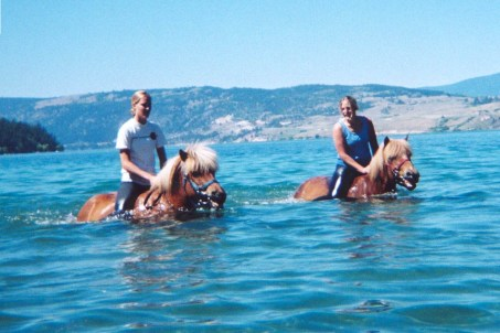 Mandy Pretty and Icelandic horse friends swimming in Kalamalka Lake