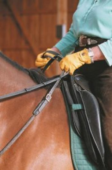 Linda Tellington Jones demonstrates how to hold the Balance Rein from the saddle
