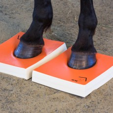 A horse stands on hard surefoot pads.