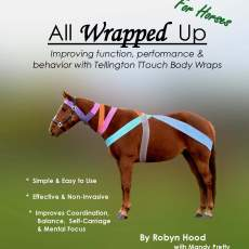 All Wrapped Up for Horses with Tellington TTouch bodywraps