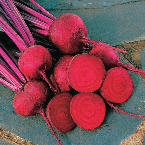 Beet Red Ace - Qty. msd