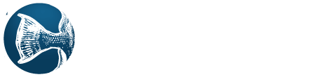 Trigger Technology Systems