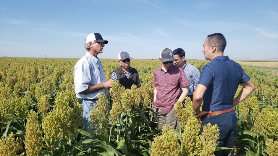Farmers visit with international buyers