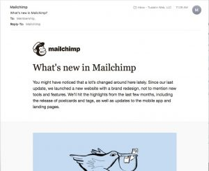 Mailchimp email