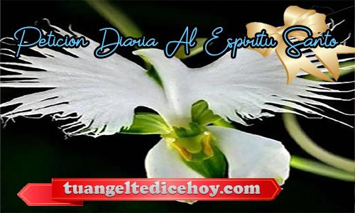 PETICIÓN DIARIA AL ESPÍRITU SANTO 18/05/2020