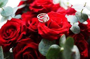 [愛情][觀點] 愛情不是犧牲與付出,請重新定義浪漫愛。