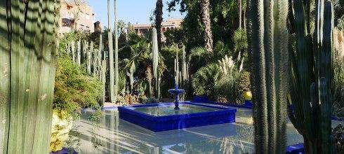 [自助旅行] 摩洛哥馬拉喀什,馬洛雷勒花園,YSL花園