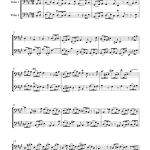 Sonate N°5 pour 2 flûtes (Télémann)