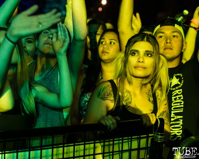 Audience Members, City of Trees, Papa Murphy's Park, Sacramento, CA. September 24th, 2017. Photo Mickey Morrow