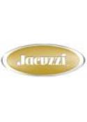 Jacuzzi Spas