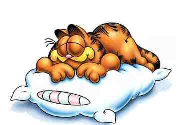 Cómo dormir tu camino hacia el éxito