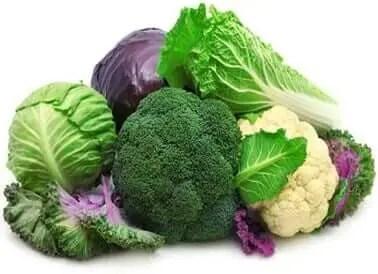 Que alimentos producen testosterona