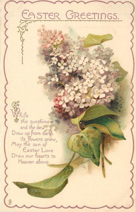 EASTER GREETINGS Lilac TuckDB