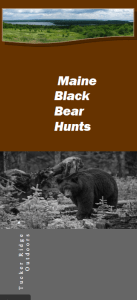TRO Bear Hunt Brochure