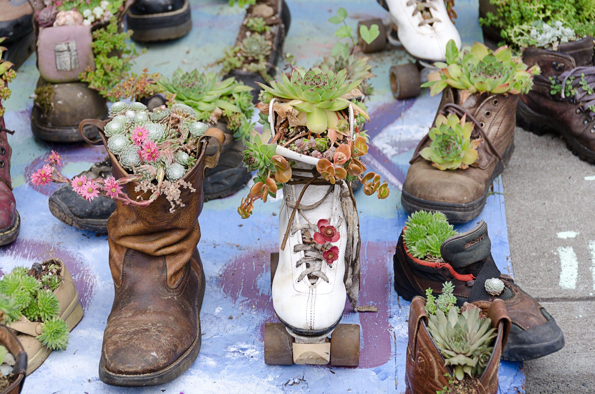 Boot & Skate Planter