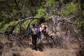 Tucson Samaritans volunteers