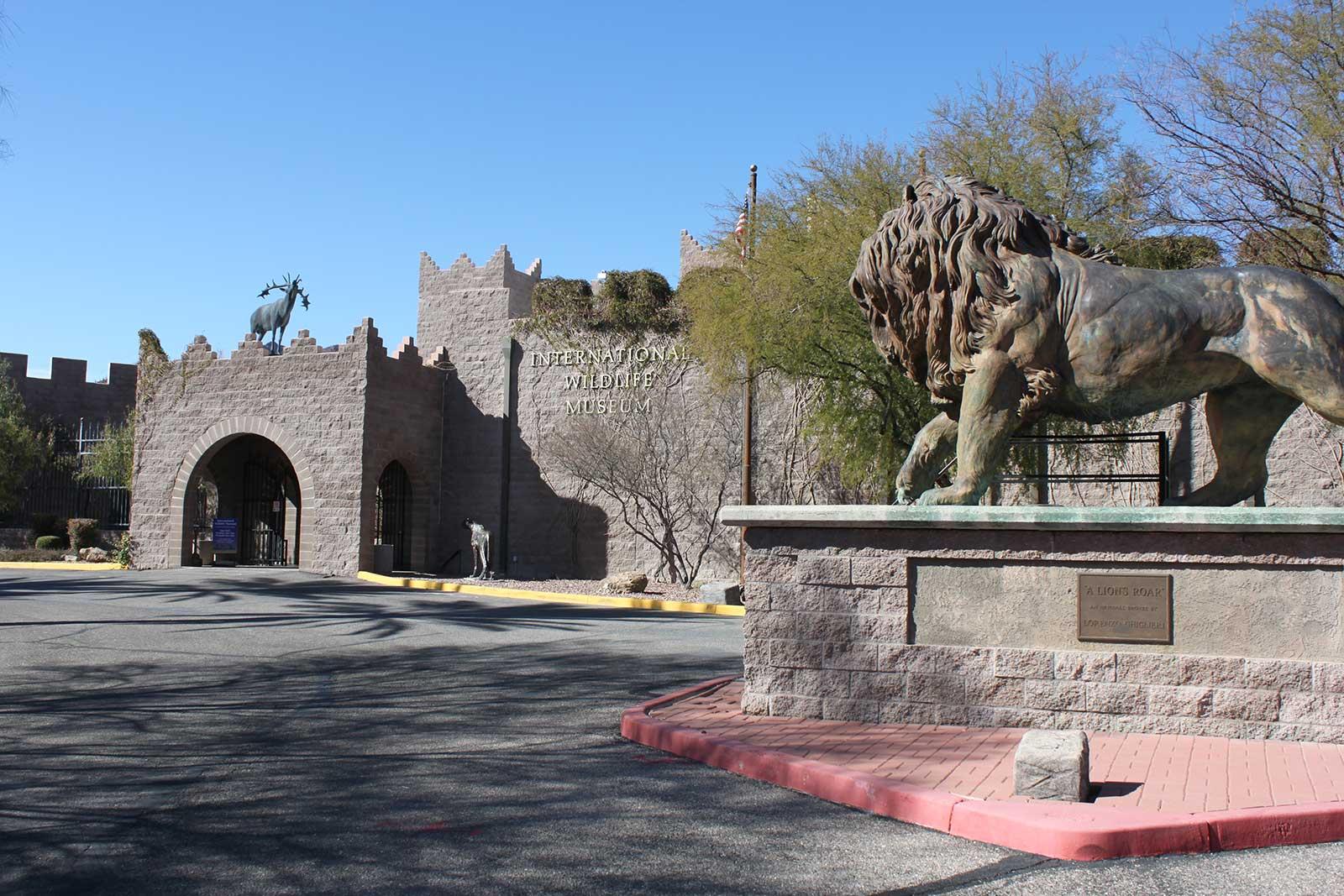 International Wildlife Museum Tucson Attractions