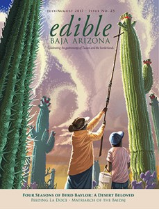 Edible Baja Magazine