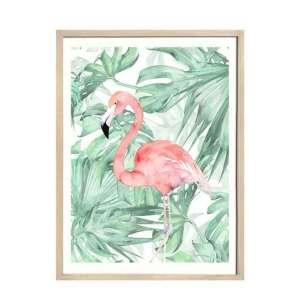 quadro-pelicano