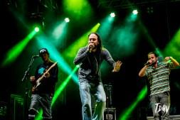 140516_festival_alternativo_londrina_Vinicius_Grosbelli_00137
