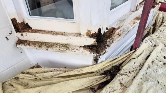 Carpenters-Shrewsbury-Bay-window-rott-repair0