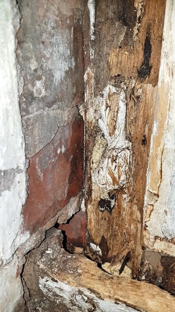Shrewsbury-Shropshire-Carpenter-window-rot-repair