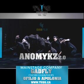 TUDS7-Company-Gadfly-Anomykz2