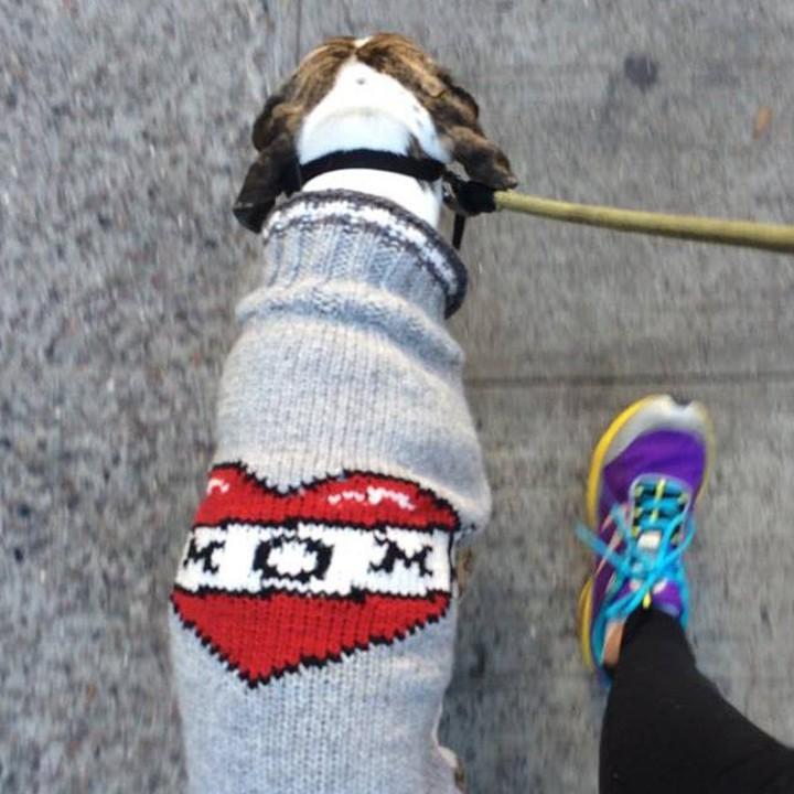Doggie Gifts Tattooed Sweater TueNight.com