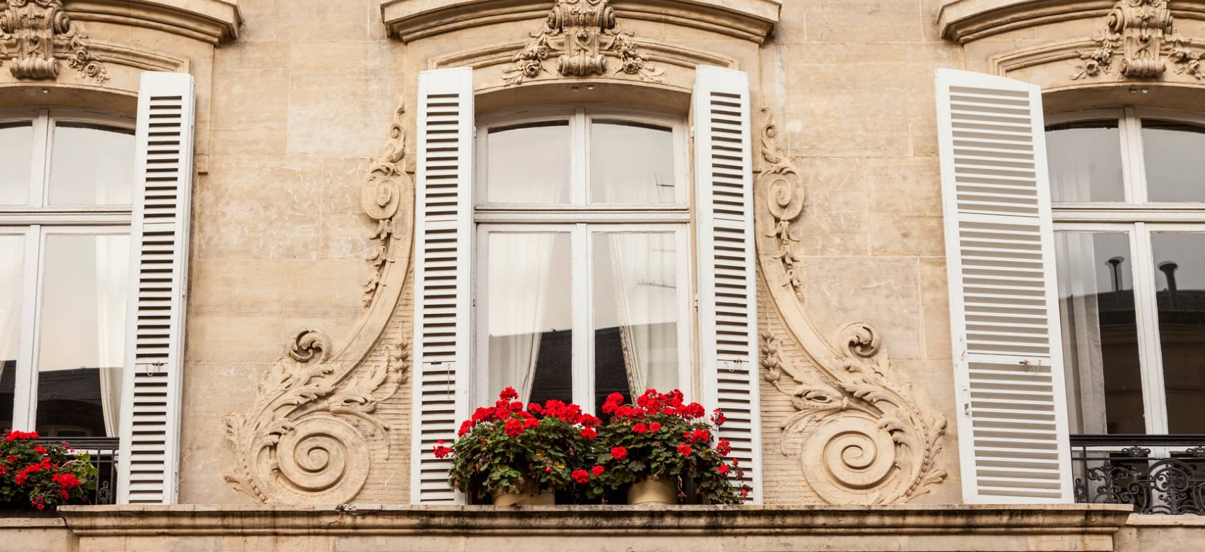 A Move to Paris Brought an Unexpected Refuge