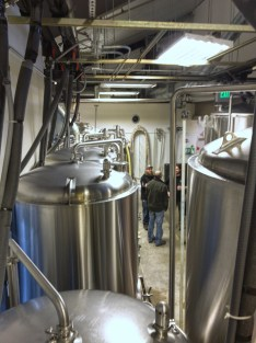 Looking through the fermentors