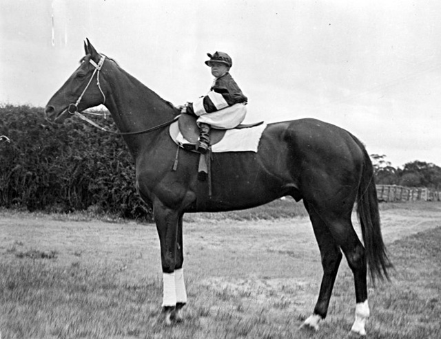Australia's most famous race horse, Phar Lap, won the Melbourne Cup in 1930. The following year, Melbourne photographer Henry Moran took this picture of the great horse with the son of Phar Lap's trainer, Harry Telford. Telford liked to put his small son, Gerald, on Phar Lap for photos.  Henry Moran submitted the photograph to the Copyright Office for copyright registration just over a week after it was taken on 9 November 1931. Only five months later Phar Lap died suddenly in the United States.  The photograph of young Gerald Telford astride Phar Lap is held by the National Archives with Moran's original copyright application.