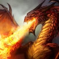 De nouveaux dragons sont arrivés dans l'antre !