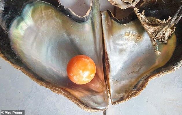 La perla naranja que vale millones.