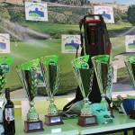 170514 ALH, Entrega de premios (1)