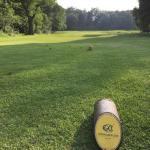 180609 Olton, Olton Golf Club (2)