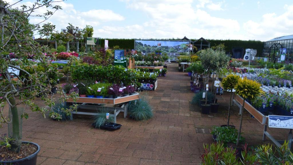 Tuincentrum Groenen Impressie 2