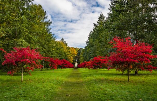 Thorp Perrow in de Yorkshire Dales een Arboretum anders dan anderen