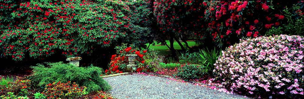 Tuinen van Schotland – Logan House Garden en de warme golfstroom