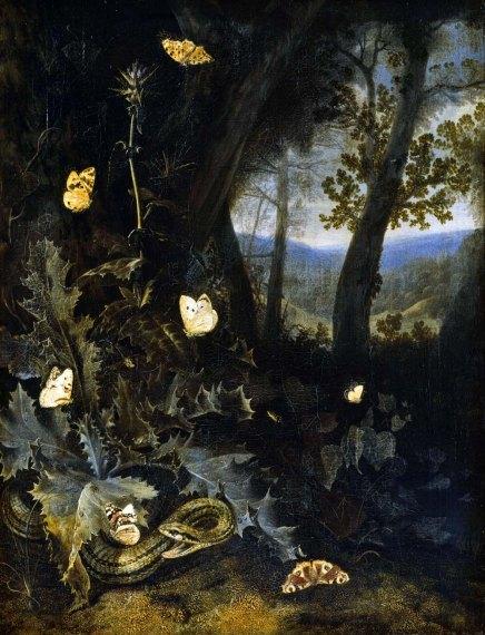 GemÑlde / ôl auf Leinwand (2. HÑlfte 17. Jahrhundert) Otto Marseus von Schrieck [1619 - 1678] Objektma· 68,4 x 53 cm Inventar-Nr.: G440