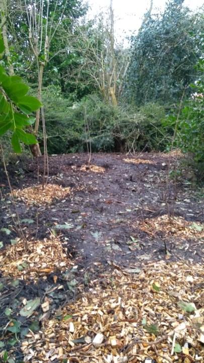 31 maart: alles geplant