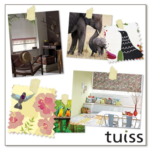 tuiss-trends-aug15-4