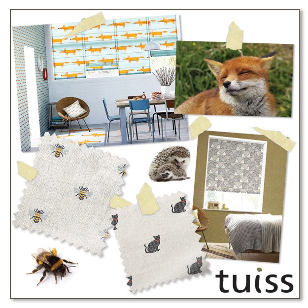 tuiss-trends-aug15