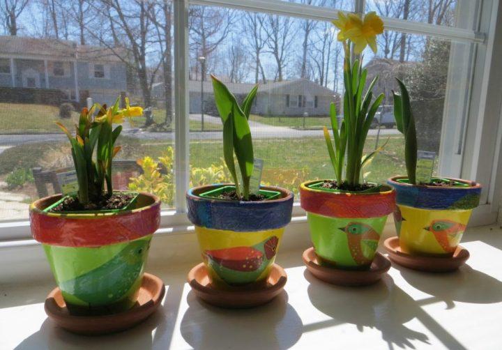 Windowsill flower pots