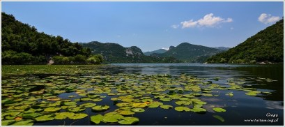Czarnogóra Jezioro Szkoderskie, Montenegro