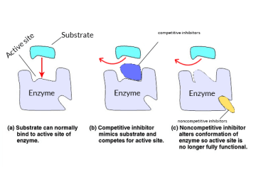 Enzyme Inhibitors and Classification of Enzyme Inhibition