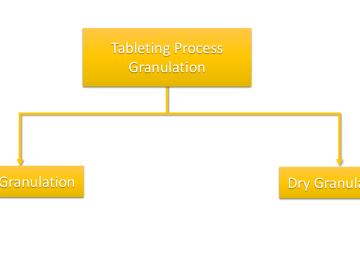 Tableting Process Granulation