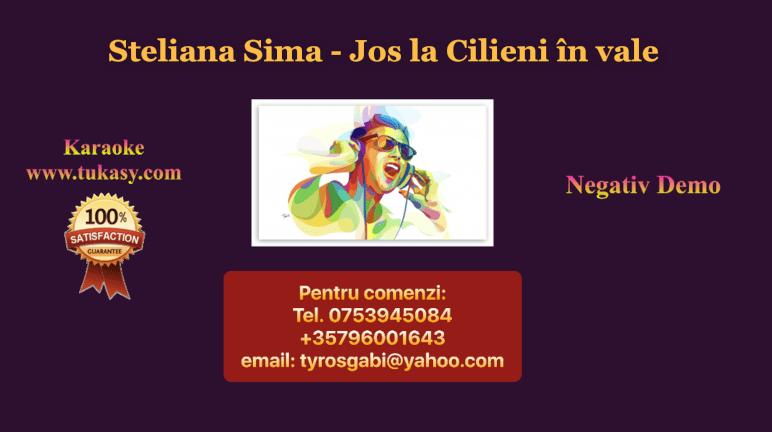 Jos la Cilieni in vale – Steliana Sima – Negativ Karaoke Demo by Gabriel Gheorghiu